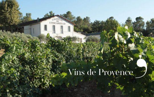 Les meilleurs rosés de Provence